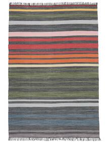 Rainbow Stripe - Grijs Vloerkleed 140X200 Echt Modern Handgeweven Donkergrijs/Olijfgroen (Katoen, India)