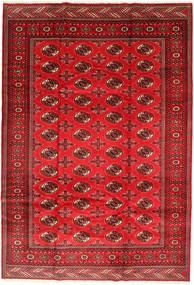 Turkaman Vloerkleed 201X293 Echt Oosters Handgeknoopt Roestkleur/Donkerrood/Rood (Wol, Perzië/Iran)