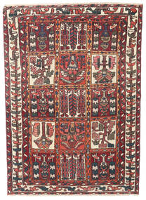 Bakhtiar Patina Vloerkleed 110X152 Echt Oosters Handgeknoopt Donkerrood/Donkerbruin (Wol, Perzië/Iran)