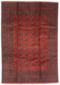 Afghan Vloerkleed 200X288 Echt Oosters Handgeknoopt Donkerrood/Donkerbruin (Wol, Afghanistan)