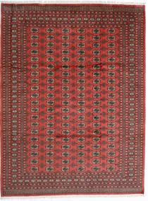 Pakistan Bokhara 2Ply Vloerkleed 246X325 Echt Oosters Handgeknoopt Donkerrood/Roestkleur (Wol, Pakistan)