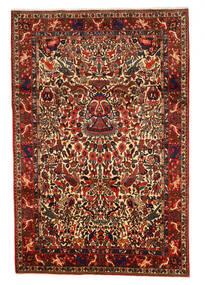 Bakhtiar Collectible Vloerkleed 208X311 Echt Oosters Handgeknoopt Donkerrood/Donkerbruin (Wol, Perzië/Iran)