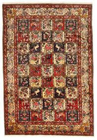 Bakhtiar Collectible Vloerkleed 212X311 Echt Oosters Handgeknoopt Donkerrood/Donkerbruin (Wol, Perzië/Iran)