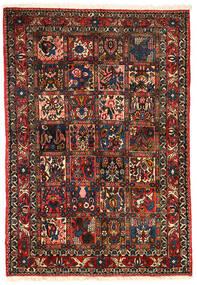 Bakhtiar Collectible Vloerkleed 101X151 Echt Oosters Handgeknoopt Donkerbruin/Donkerrood (Wol, Perzië/Iran)