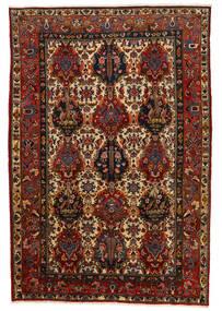 Bakhtiar Collectible Vloerkleed 206X302 Echt Oosters Handgeknoopt Donkerbruin/Donkerrood (Wol, Perzië/Iran)